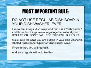 loading dishwashers 02