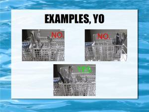 loading dishwashers 17