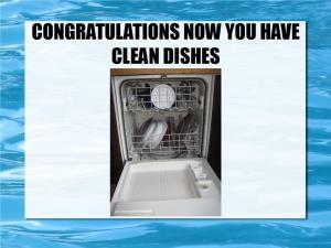 loading dishwashers 22